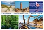 Postkarte Nationalpark Vorpommersche Boddenlandschaft