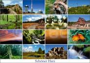 Postkarte Schöner Harz