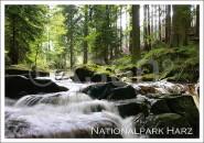Postkarte Nationalpark Harz Fluss