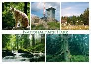 Postkarte Nationalpark Harz 5 Motive
