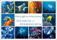 Postkarte Stralsund Ozeaneum und Meeresmuseum