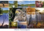 Postkarte Müriz Nationalpark