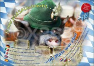 Postkarte Sauschlecht