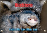 Postkarte Nüchtern siehst Du furchtbar aus
