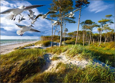 3D-Postkarte Strand