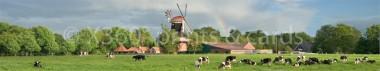 Panoramapostkarte Rhauderfehn Mühle