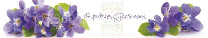 Panoramapostkarte Herzlichen Glückwunsch Veilchen